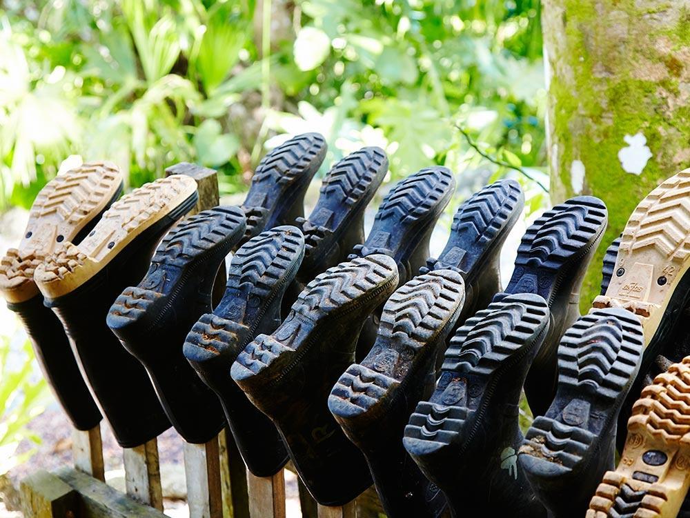 Trek in Costa Rica