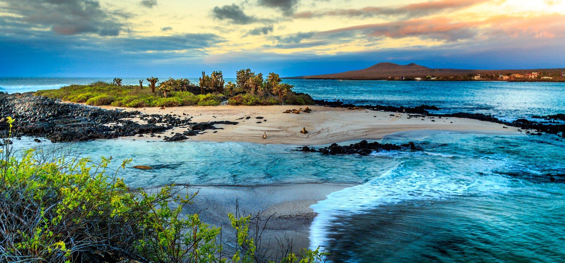 Shutterstock Galapagos