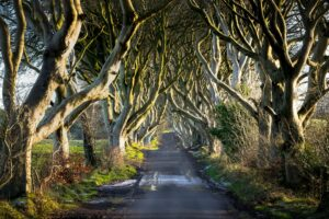 Northern Ireland home to many of the Game of Thrones locations