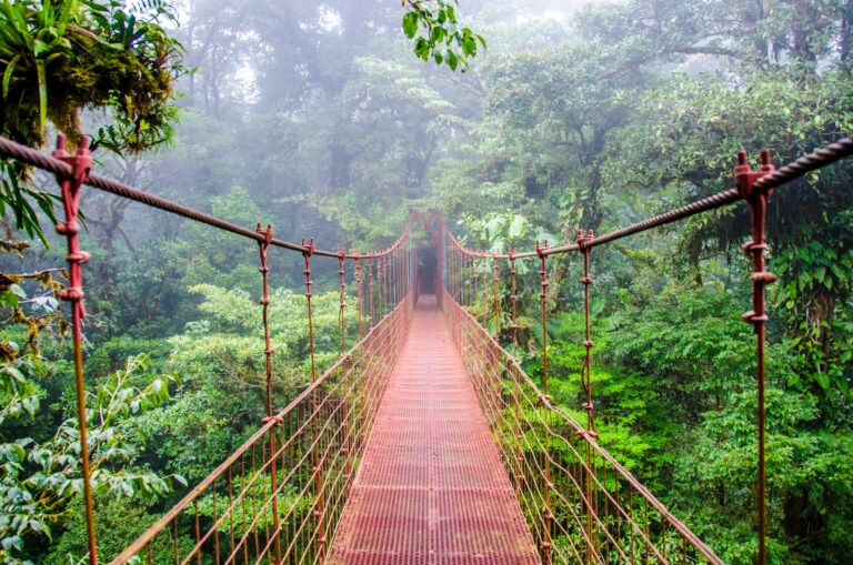 Sky Bridge at Monteverde